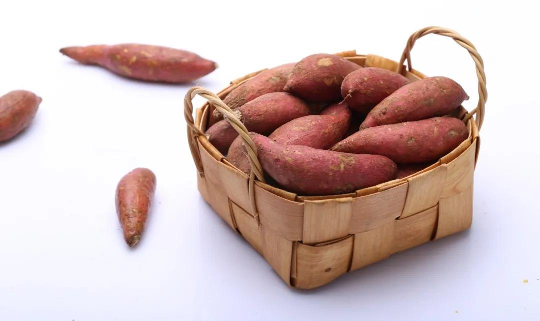 天天吃红薯能瘦吗?不想越来越胖,必须要知道这2点