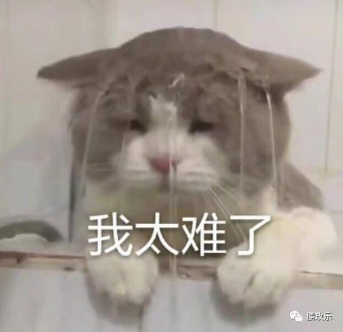 祛湿的食物